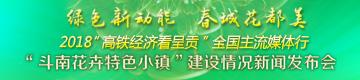 """""""斗南花卉特色小镇""""建设情况新闻发布会"""
