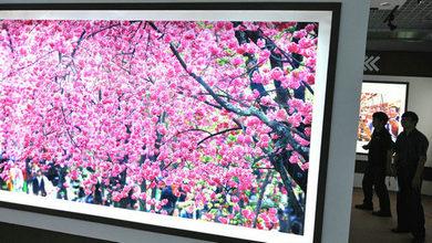 """""""美麗春城 幸福昆明""""大型圖片展在昆明舉行"""