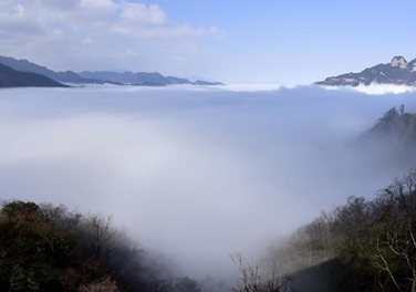 云雾中的神农架