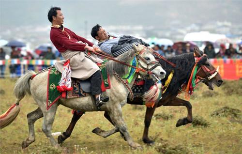 云南香格里拉赛马节三天吸引23万游客