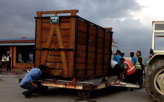 尼泊尔赠送的两只独角犀牛正式移交中国